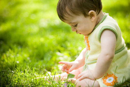 Впитывающий разум ребёнка