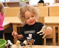 Развитие речи в Монтессори-среде для детей до 3 лет