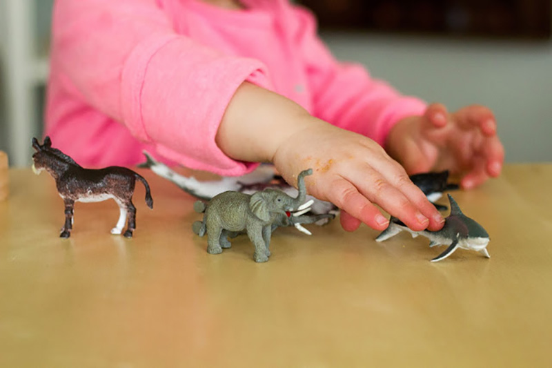 Уменьшенные модели животных для расширения словарного запаса в Монтессори-среде